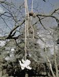 """Angel"" digital photograph as vinyl banner 150x100cms"