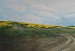 """Oil Seed"" watercolour 50x60cms"
